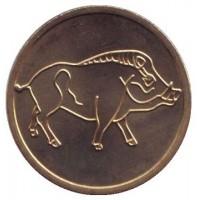 Год кабана. Лунный календарь. Сувенирный жетон, СПМД, Россия.