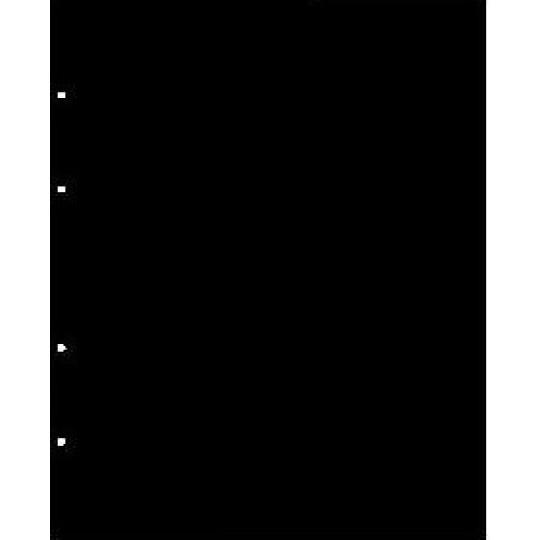 """Лист разделительный, черный. Формат """"Optima"""" (Оптима), производство Россия."""